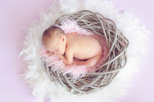 Sleeping Baby in feather nest